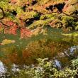 埼玉・四季便り(鎌北湖)2018.11.17