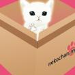猫転送装置な脱出ゲームアプリをつくりました。
