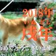 ◆◇◆ 2018 ◇◆◇ 新春たなくじ ◆◇◆