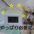 湿度付電波時計 o(*^▽^*)o~♪