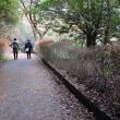 深山公園を歩く