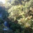 11月の滝の流れるケヤキのお店工房藤岡