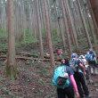 奥武蔵 丸山