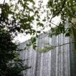 2017夏 「雨のウーララ」