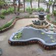 雨の中の池