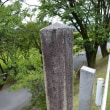 まち歩き北0827 深泥池 天然記念物
