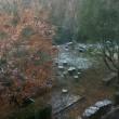 討ち入りの日 やっぱり雪景色