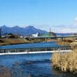 冬だというのに矢田川の梅花藻の記事に閲覧が殺到した日は成人式が開かれてました…