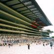 2004年の東京競馬場