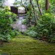 苔の寺【妙法寺】湿度たっぷりの日に行ってみた