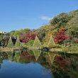 「紅葉」/肥後細川庭園(2017初冬)