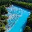 青い池、綺麗です。