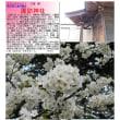 埼玉-763 諏訪神社