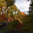 四季折々836  紅葉の津久井湖城山公園
