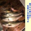 7/15の夜マタカ乗り合い