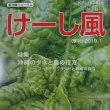 『けーし風』読者の集い(36) 沖縄のタネと農の行方
