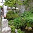 醒ヶ井宿 の 梅花藻