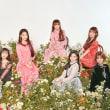 新曲「秘密の庭園(Secret Garden)」の切り口(OH MY GIRL)