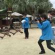 竹富島水牛観光