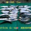 笑転爺の釣行記 9月26日☀ 久里浜・浦賀 イワシ爆釣れ