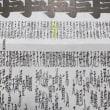858日目 平成29年夏場所番付発表