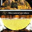 Mac Baren - HH Balkan Blend