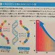 AGA 脱毛リスク遺伝子検査 CAGとCGCリピート数とは?