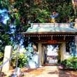 二つの霊場札所の「龍淵山天応院」