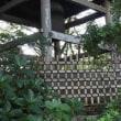 水戸の垣根(2)