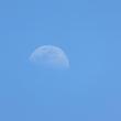 6月21日の散歩 曇り/晴れ