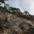 槇尾山☆清水滝と蔵岩
