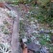 初雪から2日目「初氷」。