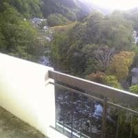伊豆湯ヶ島温泉