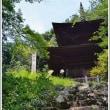 神社の境内で咲く 山ゆり   (2の2)  ★ 2018.07.22 ★