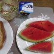 7/22夏野菜の天ぷらで夕ご飯