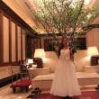 """5/13(日)「Hotel La Suite Kobe Harborland」""""GRAND BLEU""""The126th Smooth Sounds"""