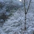 雪化粧の谷間を走行 2