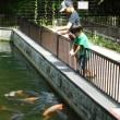 有馬ます池でニジマス釣り♪