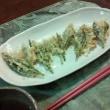 牧の原(静岡)で茶摘み体験&SL見学