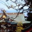 『梅たより』 六所神社