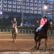 11月9日 4R ユーカリデビュー2歳新馬