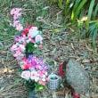 山の神様か、水の神様か・・きれいなお花が供えてありました