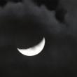 白黒な月夜