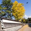 旧細川刑部邸 と 釣耕園 の紅葉
