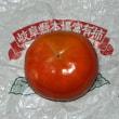 ブラックフライデーに富有柿と我家の七不思議