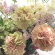 お花いろいろ…♪
