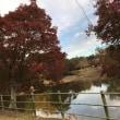 大阪朝鮮高級学校ラグビー部大阪大会優勝と奈良散策