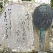 両子寺で見た植物