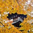 丈六寺の紅葉