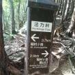 稲村ヶ岳リベンジ